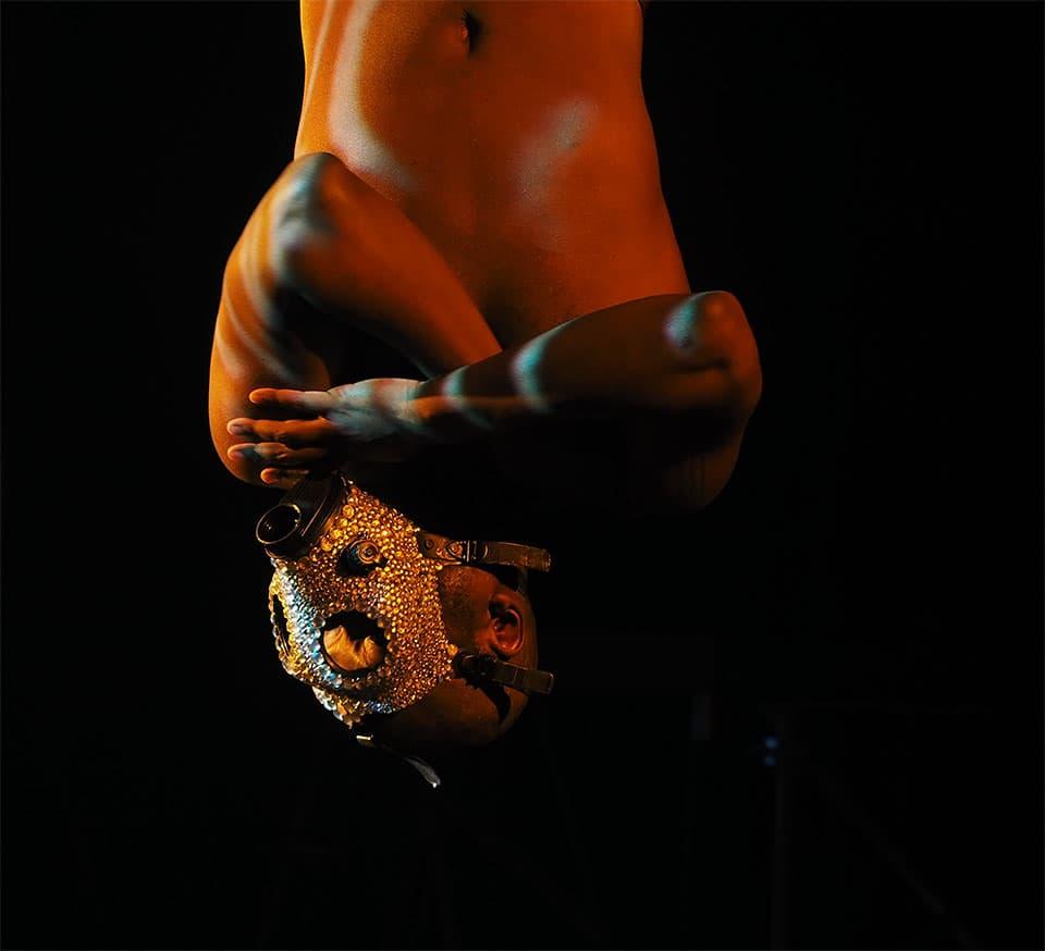 Jaamil Olawale Kosoko's Chameleon. Photo © Sarah Griffith